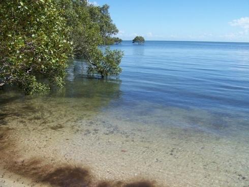 67 Coondooroopa Drive Macleay Island, QLD 4184