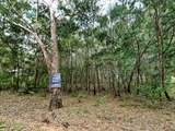 15 Eucalypt Russell Island, QLD 4184