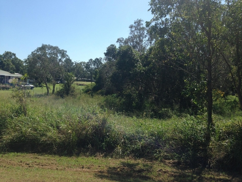 Lot 9 Kurths Road South Kolan, QLD 4670