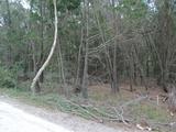 21 Nunkeri Drive Macleay Island, QLD 4184