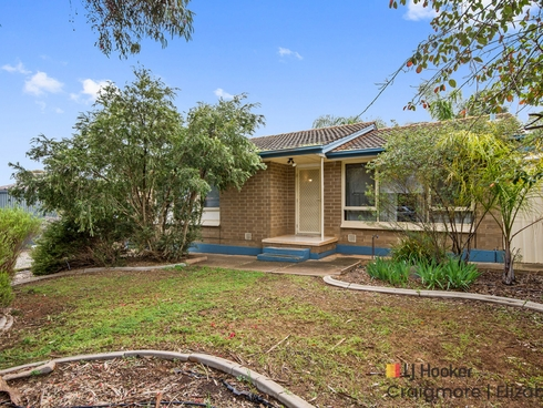 117 McKenzie Road Elizabeth Downs, SA 5113