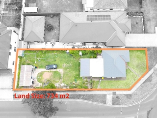 19 Vale Street Canley Vale , NSW, 2166