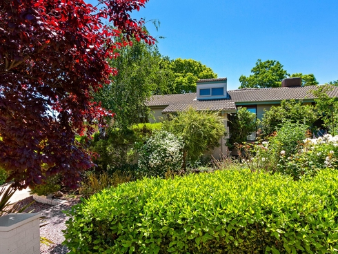 17 Fortitude Street Red Hill, ACT 2603