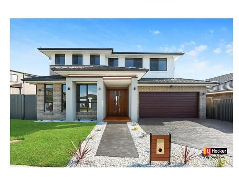 41 Fanflower Avenue Denham Court, NSW 2565