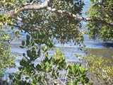 lot 40 Azure Court Lamb Island, QLD 4184