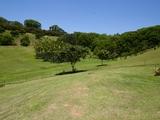 8 Biral Close Bilambil, NSW 2486