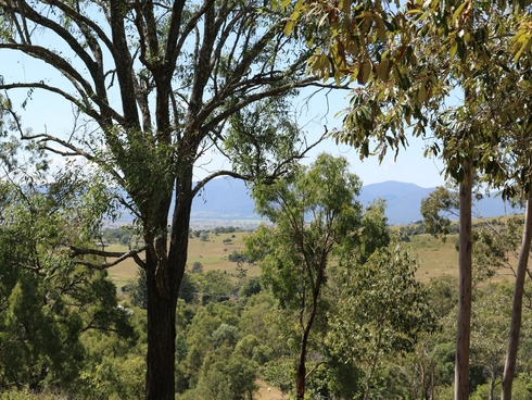 Lot 5 Linkes Lane Mount Beppo, QLD 4313