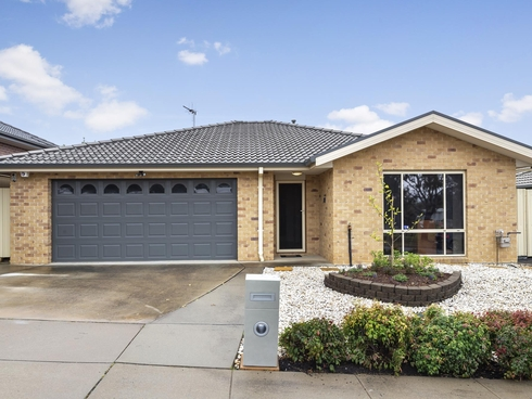16 Thea Astley Crescent Franklin, ACT 2913