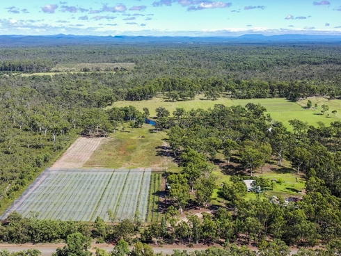 69 Florda Gold Drive Wells Crossing, NSW 2460