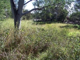 180-180A Lucas Drive Lamb Island, QLD 4184