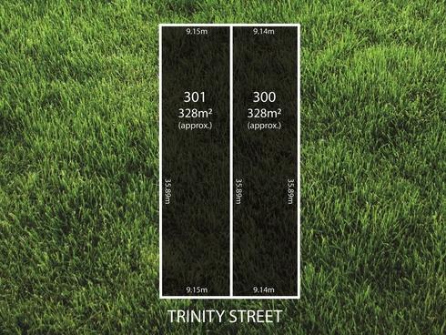 Lot 301/ Trinity Street Ottoway, SA 5013